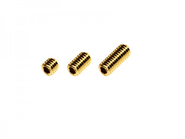 HP Screw-in Weight 100 gn M6